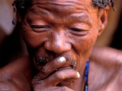 20091218180032-survival-bushman-man-news.jpg