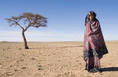 Tebraa: retratos de mujeres saharauis