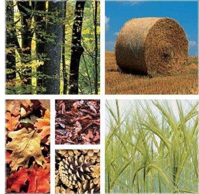 Amenaza de desertificación