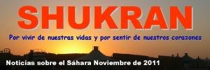 Shukran: noticias sobre el Sáhara (noviembre 2011)