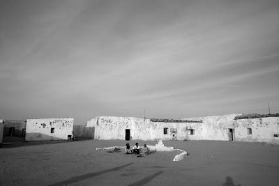 Shukran: noticias sobre el Sáhara (febrero 2012)