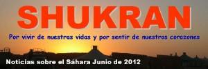 Shukran: noticias sobre el Sáhara (junio 2012)