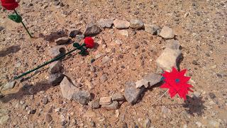 Shukran: noticias sobre el Sáhara (marzo 2014)
